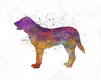 Castro Laboreiro Dog In Watercolor Poster by Pablo Romero