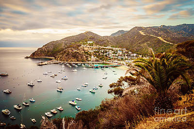 Catalina Island Avalon Bay Picture Poster by Paul Velgos