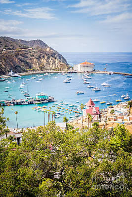 Catalina Island Avalon Bay Vertical Photo Poster by Paul Velgos