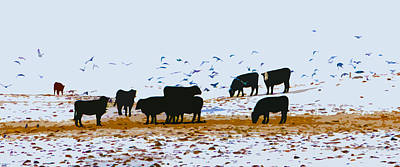 Cattle And Birds Poster by David Ralph Johnson