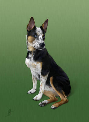 Cattle Dog Poster by Michelle Spalding