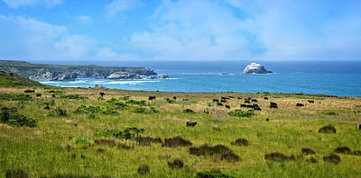 Central Coast Panorama - Hwy 1 Poster by Lynn Bauer