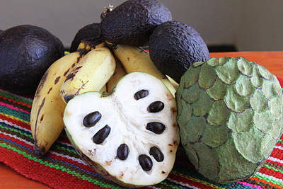 Cherimoya Fruit With Bananas And Avocados Poster by Janet Millard
