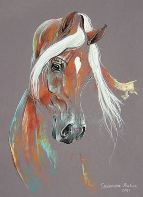 Chestnut Arabian Horse Poster by Paulina Stasikowska