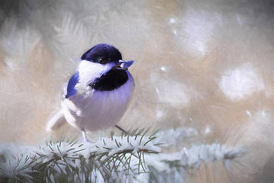 Chickadee And The Sunflower Seed Poster by Barbara Hymer