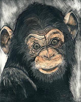 Chimpanzee Poster by Wanda McVeigh