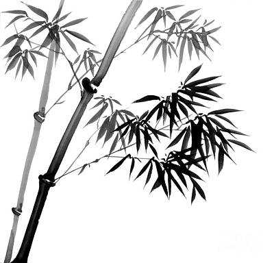 Chinese Ink Painting Of Bamboo Poster by Evelyn Sichrovsky
