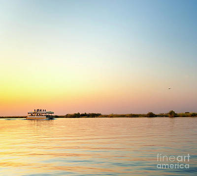 Chobe River Cruise Poster by Tim Hester