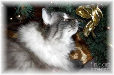 Christmas Kitty Poster by Debbi Granruth