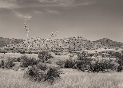Clear Arizona Morning Monochrome Poster by Gordon Beck