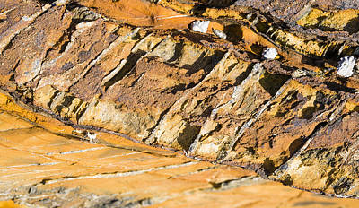 Cleavage In Rocks - Australia Poster by Steven Ralser