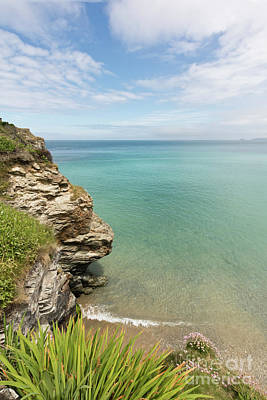 Cliff Edge At St Agnes Poster by Terri Waters