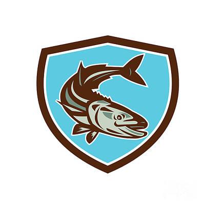 Cobia Fish Diving Down Shield Retro Poster by Aloysius Patrimonio