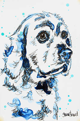 Cocker Spaniel In Blue Poster by Shaina Stinard