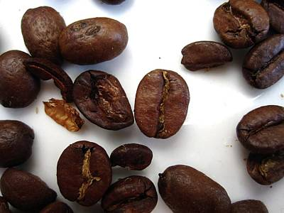 Coffee Beans Poster by Mary Ellen Frazee