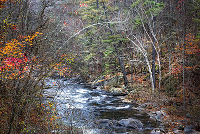 Cold Mountain Stream Poster by Debra and Dave Vanderlaan