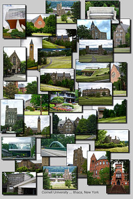 Collage Cornell University Ithaca New York Vertical Poster by Thomas Woolworth