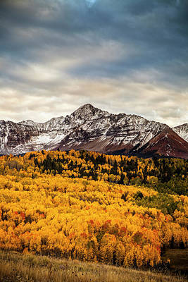 Colorado Gold Poster by Andrew Soundarajan
