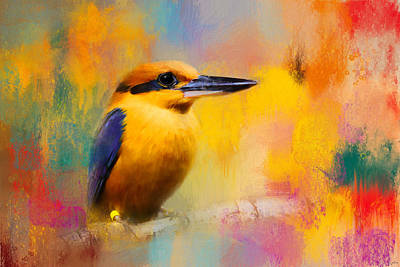 Colorful Expressions Kingfisher Poster by Jai Johnson