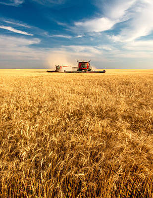 Combines Cutting Wheat Poster by Todd Klassy