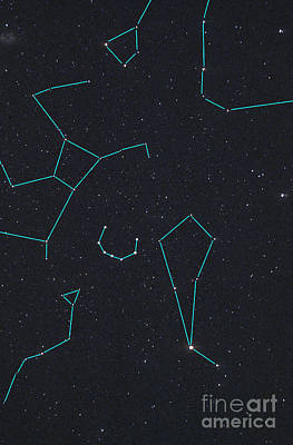 Constellations Poster by Larry Landolfi