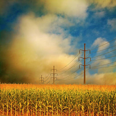 Corn Field At Sunrise Poster by Photo by Jim Norris
