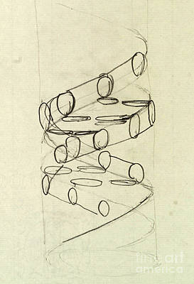Cricks Original Dna Sketch Poster by Science Source