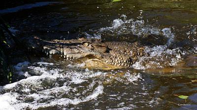 Crocodile Attack Poster by Gary Crockett