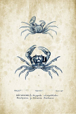 Crustaceans - 1825 - 10 Poster by Aged Pixel