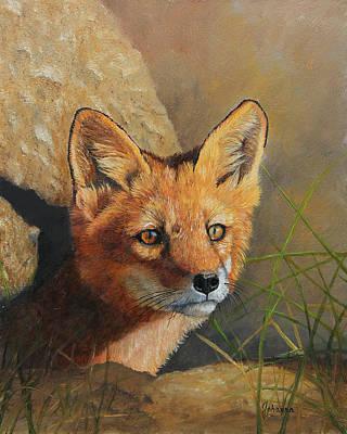 Curious - Red Fox Kit Poster by Johanna Lerwick Wildlife Nature Artist