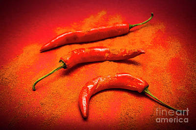 Curry Shop Art Poster by Jorgo Photography - Wall Art Gallery