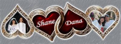 Custom Hearts Poster by Shane Bechler