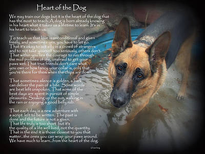 Custom Paw Print Maxx Heart Of The Dog Poster by Sue Long