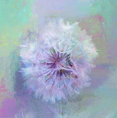 Dandelion In Pastel Poster by Terry Davis