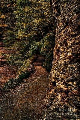 Dark Autumn Path Poster by Scott Chimber