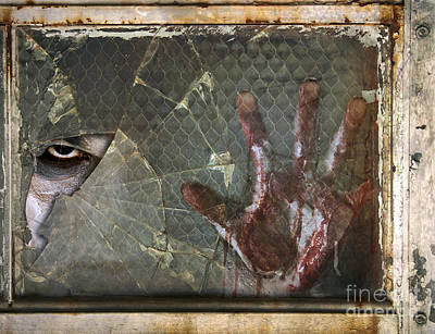 Dead Window Poster by Jt PhotoDesign