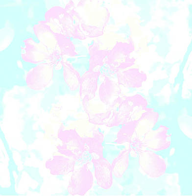 Delicate Flowers And Flowers Poster by Nat Air Craft