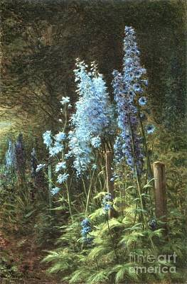 Delphiniums In A Wooded Landscape Poster by Joseph Farquharson