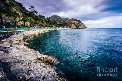 Descanso Bay Catalina Island Picture Poster by Paul Velgos