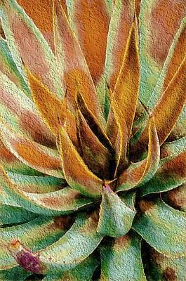 Desert Agave Poster by Julie Palencia