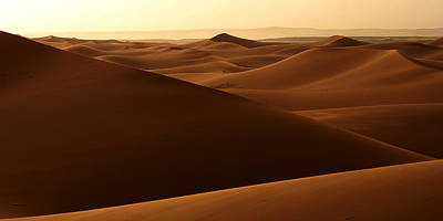 Desert Impression Poster by Ralph A  Ledergerber-Photography