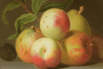 Detail Of Apples On A Shelf Poster by Jakob Bogdany