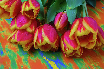 Dewy Soft Tulips Poster by Garry Gay