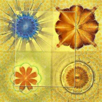 Didactic Rainbow Flower  Id 16165-120332-39891 Poster by S Lurk