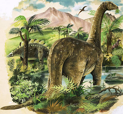 Dinosaurs Poster by English School