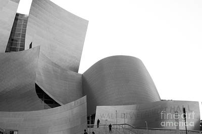 Disney Concert Hall California 22 Poster by Micah May