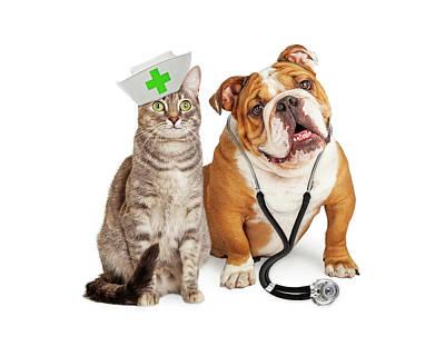 Dog And Cat Veterinarian And Nurse Poster by Susan Schmitz
