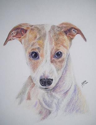 Dog Portrait Poster by Juliana Motzko