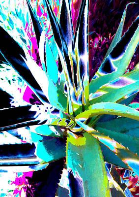 Aloe Shadows 6  Ref.dp45  Poster by Rheta-Mari Kotze