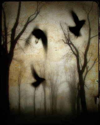 Dusk Begins As The Crows Fly Poster by Gothicolors Donna Snyder